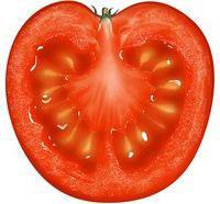 помидоры полезные свойства и противопоказания