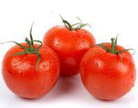 чем полезны свежие помидоры