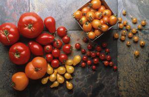 Содержание витаминов в томатах