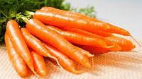 Польза моркови