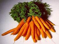 Какие витамины содержаться в моркови