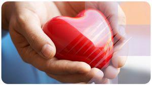витамины для здоровья сердца и укрепления сосудов