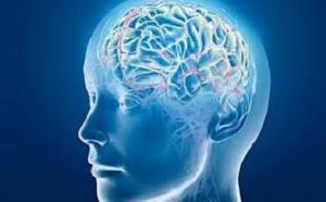 Способы очищения сосудов головного мозга