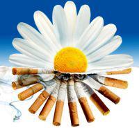 улучшения после отказа от курения
