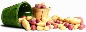 похудение на диете с картошкой