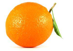химический состав плодов апельсин