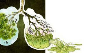 ускорение очищения легких