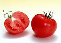 польза и противопоказания помидоров